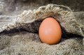 Egg of still life chicken on linen Royalty Free Stock Photos