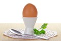 Egg in a support Royalty Free Stock Photo