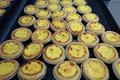 Egg tarts Stock Photography