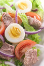 Egg And Tuna Salad Stock Image