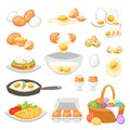 Egg vector easter food and healthy eggwhite or yolk in egg-cup or cooking omelette in frying pan for breakfast Royalty Free Stock Photo