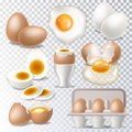 Egg vector healthy food eggwhite or yolk in egg-cup for breakfast illustration set of eggshell or egg shaped ingredients Royalty Free Stock Photo