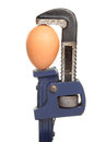 Egg in wrench Stock Images