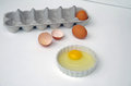 Egg yoke and shells with egg carton in white ceramic eggs in white background Stock Photos