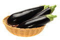 Eggplant or aubergine vegetable on white background Stock Photos