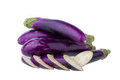Eggplant isolated on white background Royalty Free Stock Image