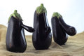 Eggplant trio Royalty Free Stock Photo