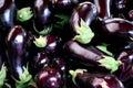 Eggplants Royalty Free Stock Photo