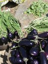 Eggplants andf long green beans for sale in weekly market orissa chatikona orissa india Royalty Free Stock Photography