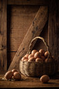 Eggs in a basket studio shot Royalty Free Stock Photos