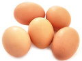 Eggs bio product natural Royalty Free Stock Image