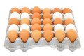 Eggs in a box Stock Photos