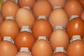 Eggs in a box brown carton closeup Stock Photos