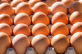 Eggs in box Royalty Free Stock Photo
