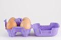 Eggs in the carton Royalty Free Stock Photography