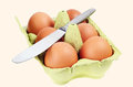 The eggs in the carton. Metal knife Stock Photography