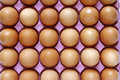 Eggs closeup of in tray Stock Photo