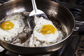 Eggs cooked with bacon grease in pan Stock Photography