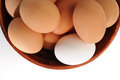 Eggs extreme close up image of Royalty Free Stock Photo