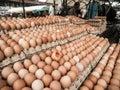 Eggs At Farmers Market