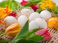 Eggs and flowers lying on straw tray Royalty Free Stock Image