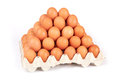 Eggs group of fresh in pater tray Royalty Free Stock Photography
