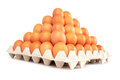Eggs group of fresh in pater tray Stock Photo