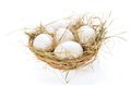 Eggs hay in a bast basket isolated on white Royalty Free Stock Image