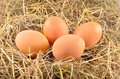 Eggs in hay four yellow Stock Photo