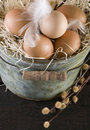 Eggs in the henhouse Stock Photography