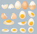 Eggs illustration Stock Images