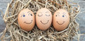 Eggs laid on straw wood background Stock Image