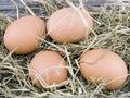 Eggs lying on hay Royalty Free Stock Image