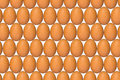 Eggs and more eggs Stock Photography