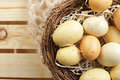 Eggs in a nest yellow egg concept food on wood background Royalty Free Stock Photo