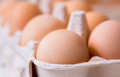 Eggs in paper tray close up Royalty Free Stock Photo