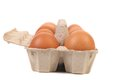 Eggs in protective case foreground close up white background Royalty Free Stock Photos