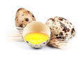 Eggs of a quail with wheat cones on white background Royalty Free Stock Images