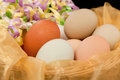 Eggs with Ribbons Royalty Free Stock Images