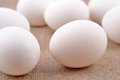 Eggs on a sacking background Royalty Free Stock Photos