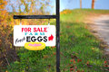 Eggs for sale sign Royalty Free Stock Photo
