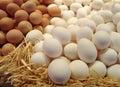 Huevos en paja