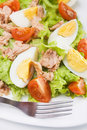 Eggs and tuna salad Stock Photography
