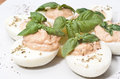 Eggs with tuna sauce and basil on wooden board Stock Photos