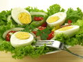 Eggs with vegetables Royalty Free Stock Photography