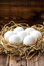 Eggs white in a nest Stock Photos