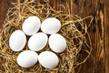 Eggs white in a nest Stock Images