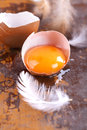 Eggs the yolk of an egg in shell on an old wooden table Royalty Free Stock Photos