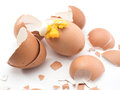 Eggshell broken while cooking on white background Stock Photography