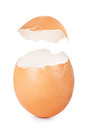 Eggshell isolated on white background Royalty Free Stock Image
